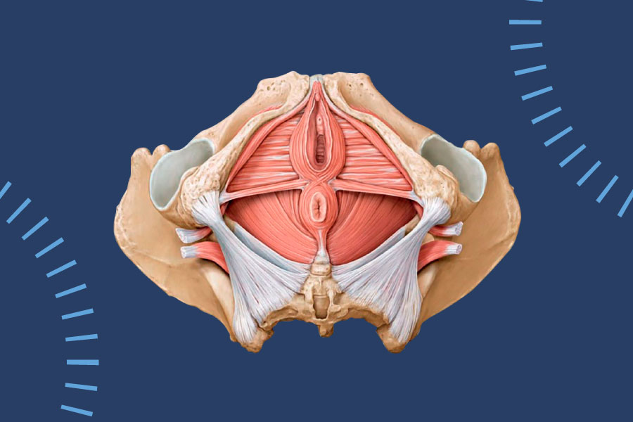 O papel da fisioterapia para ''impotência'' após cirurgia para câncer de próstata